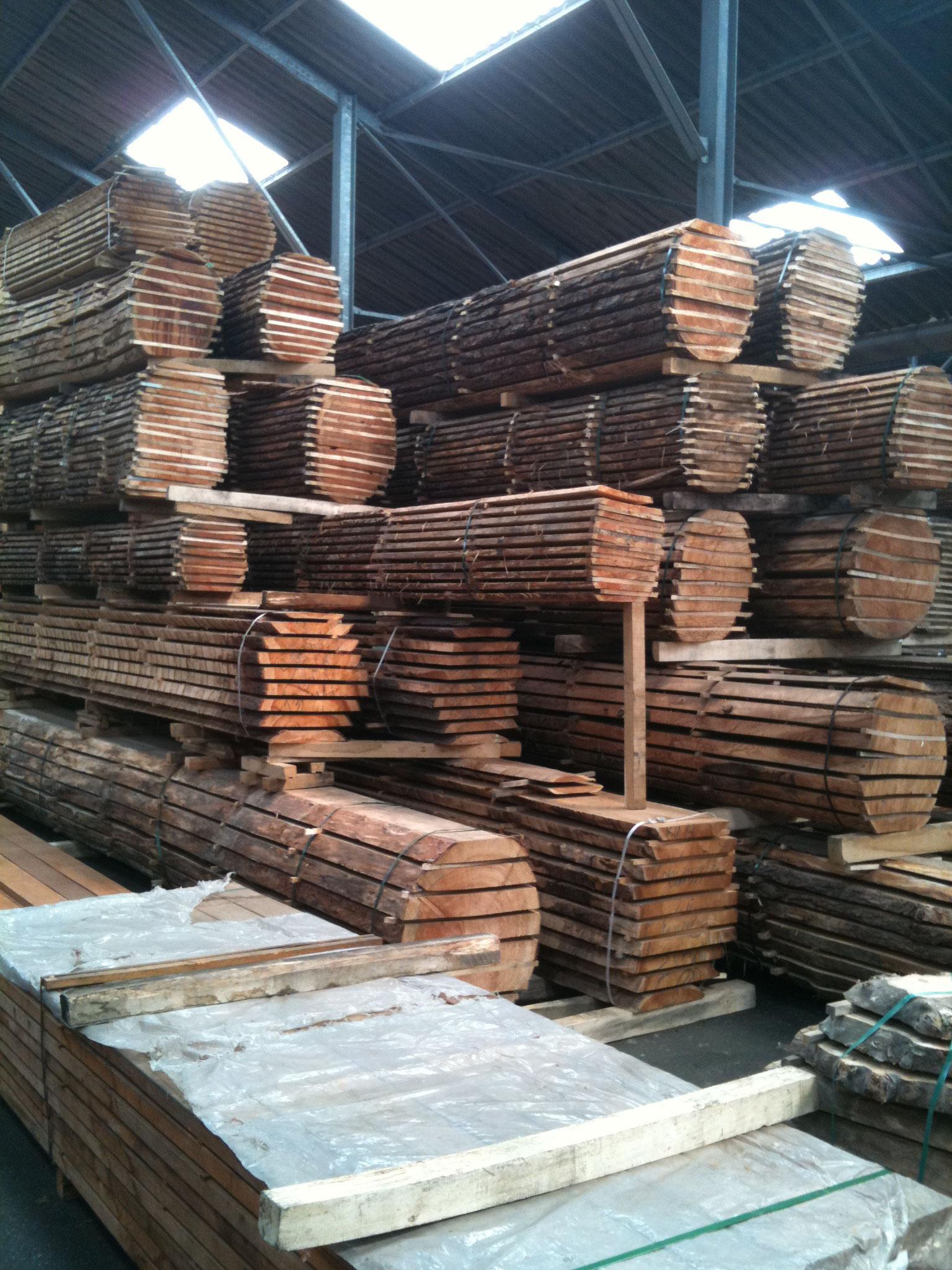 prachtige stammen hout